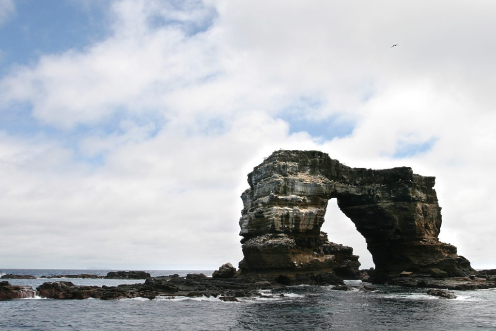 darwin's arch galapagos islands, one of the best dive sites in the world