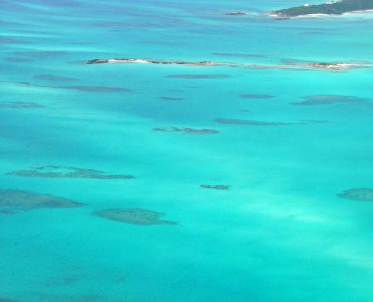 Patch reefs in Hoopers Bay
