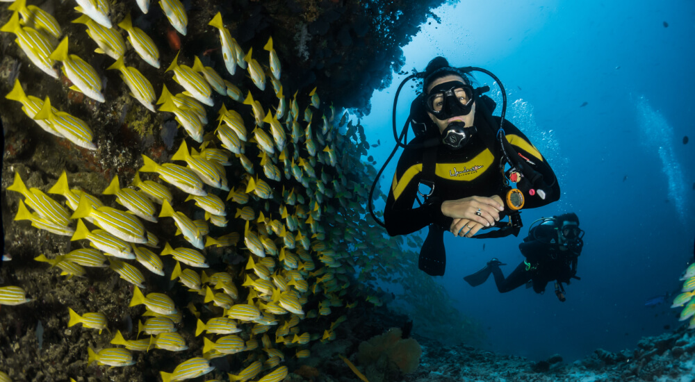 sustainable diving