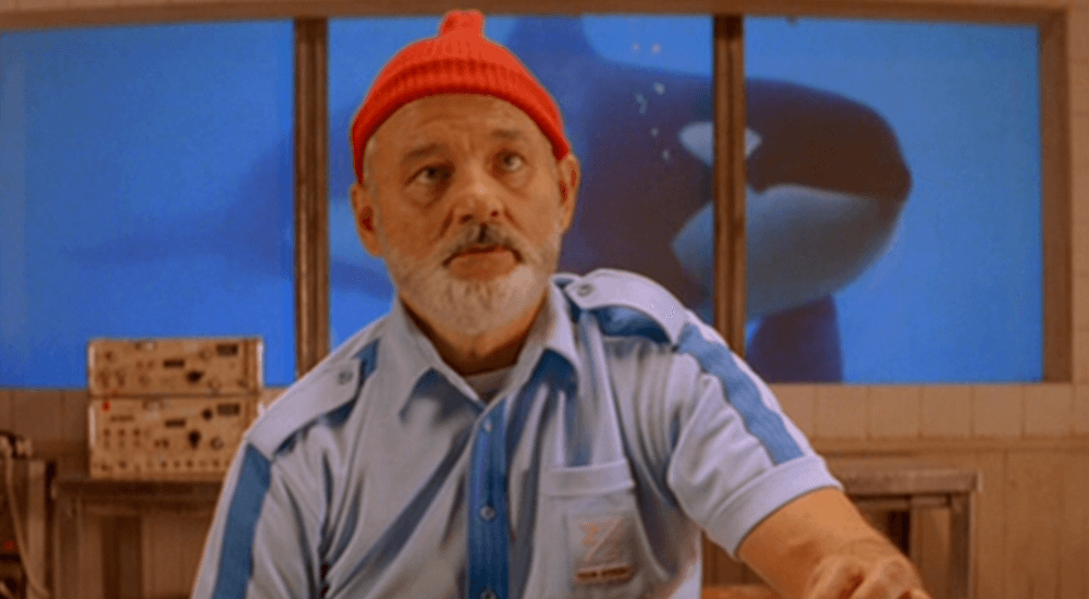 the aquatic life with steve zissou
