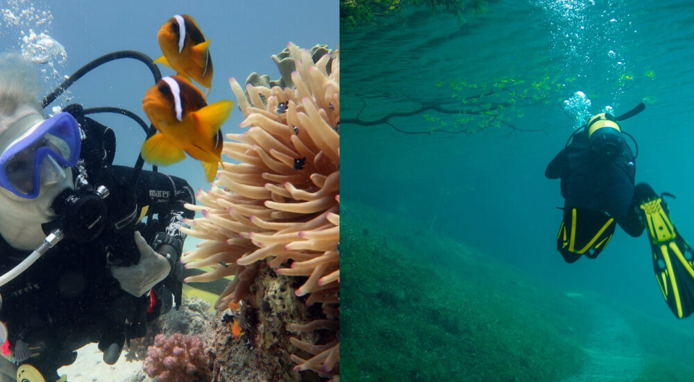 saltwater vs freshwater diving ocean and lake