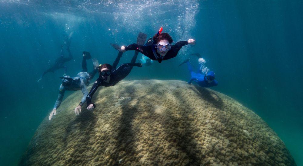 muga dhambi great barrier reef